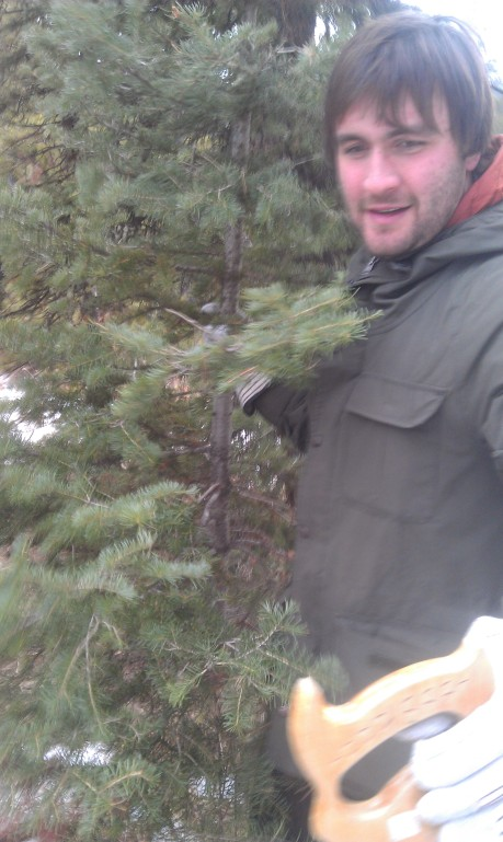 Harvesting our first tree