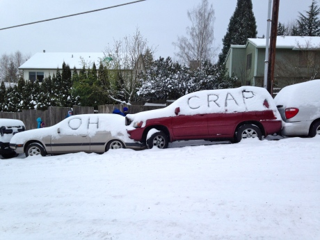 Snowpocalypse 2014 in Portland, Oregon resulted in some surprisingly funny car accidents.