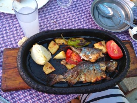 Fresh caught fish dinner